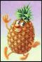 Ananas-Poilu