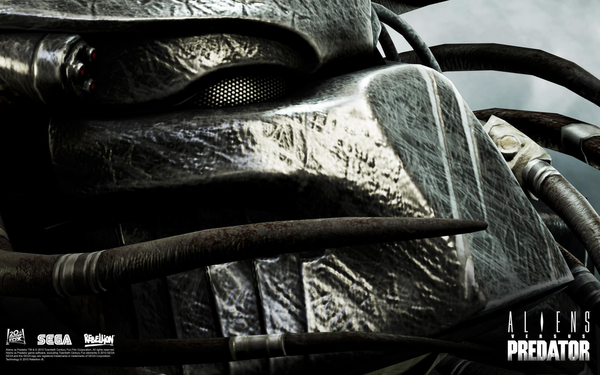 New Aliens Vs Predator MP Trailer - Aliens vs. Predator ...  |Alien Vs Predator Xbox 360 Wallpaper