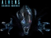 Fonds d'écran Aliens : Colonial Marines sur PC - image 12747