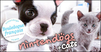 CATS BOULEDOGUE FRANAIS TÉLÉCHARGER NINTENDOGS