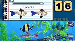 Fish Tycoon émerge en images