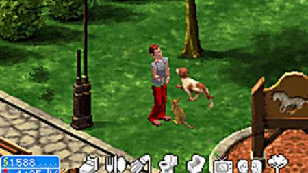 Images : Les Sims 2 à la SPA