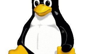 THQ envisage de sortir des jeux sous Linux