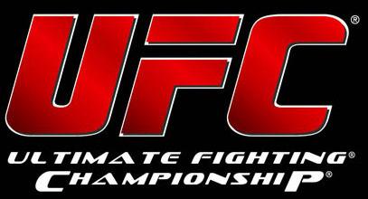 EA Sports UFC : Toujours pas en 2013