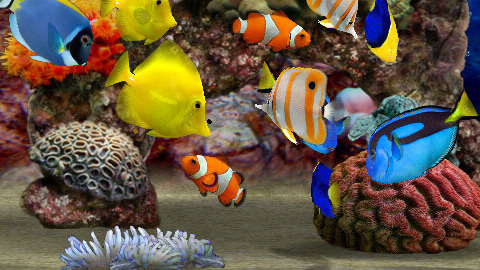 Un aquarium dans votre iPhone