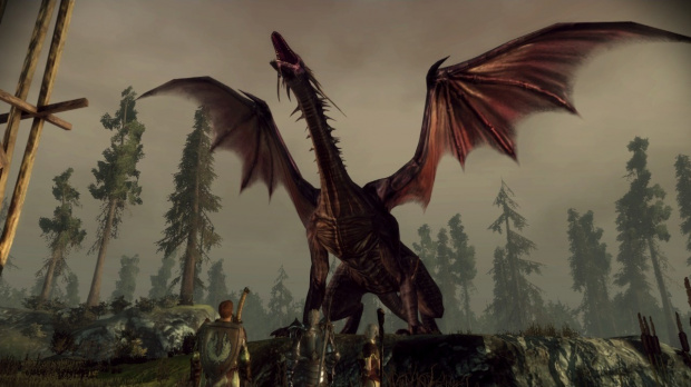 Dragon Age Origins : un add-on en vue ?