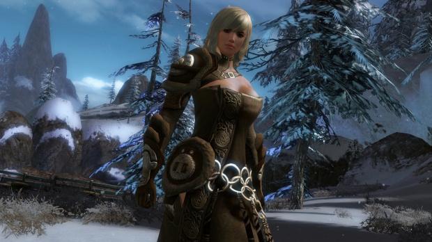 Guild Wars 2 : pas d'extension stand-alone