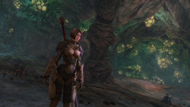 La prochaine mise à jour de Guild Wars 2