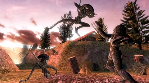 Images : Aliens Vs Predator : Requiem