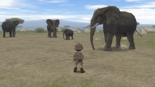 Images de Safar'Wii