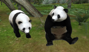 Images d'Animal Resort : Let's Make a Zoo