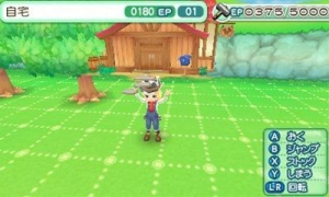 Images de Harvest Moon 3DS