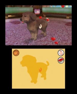 Mon h tel de luxe pour animaux 3d sur nintendo 3ds - Jeux d hotel pour animaux ...