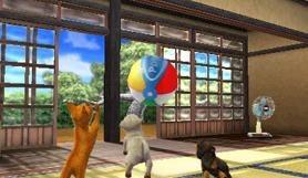Images de Nintendogs 3DS
