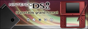 Jaquette de DSi XL : La portable grand format