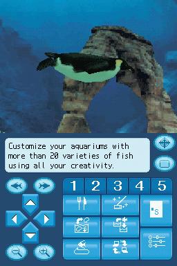 Images : les Aquarium By DS
