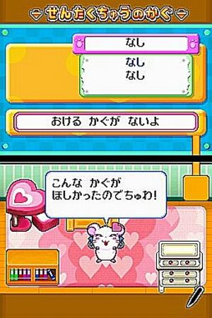 Images : Hamtaro ham ham sur DS