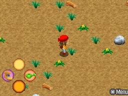 Images de Harvest Moon : L'Archipel du Soleil