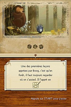 Les Rebelles de la Forêt sur DS