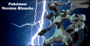 Jaquette de Pokémon Version Blanche sur DS