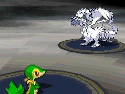 Images de Pokémon Version Noire et Blanche