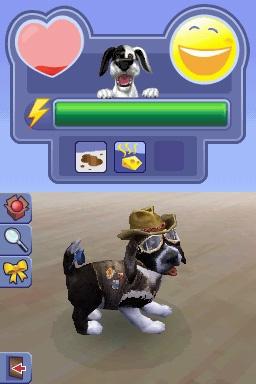 Les Sims 2 : Apartment Pets sur DS