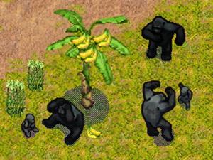 Un site officiel et des images pour SimAnimals Africa