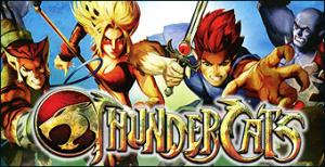 Jaquette de Thundercats sur DS