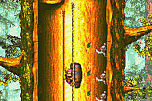 GC : Donkey Kong Country 3