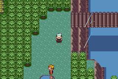 comment avoir le 7eme badge dans pokemon saphir