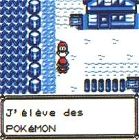 Les Pokémon bannis !