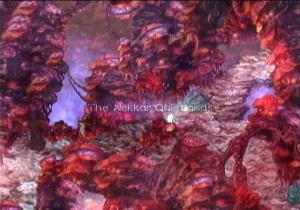 Iles flottantes sur crème céleste