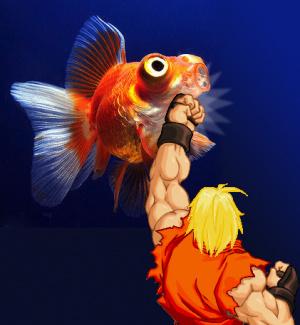Deux poissons s'affrontent sur Super Street Fighter II Turbo