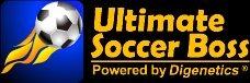 Ultimate Soccer Boss sur Web
