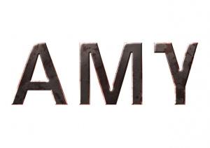 AMY sur PS3