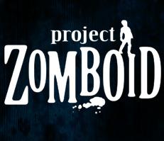 Project Zomboid sur PC