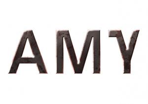 AMY sur PC