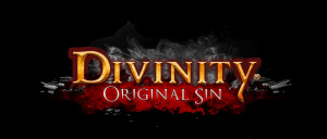 Divinity : Original Sin sur PC