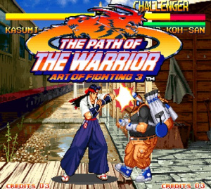 The Path of the Warrior : Art of Fighting 3 sur Wii