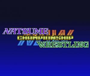 Natsume Championship Wrestling sur WiiU