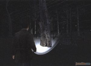 Solution complète : Chapitre 2 : La Forêt