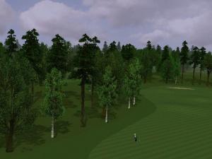 Images : Le green de World Tour Golf