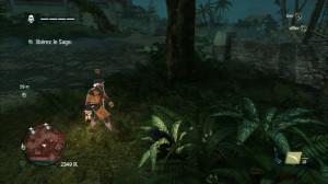 Assassin's Creed 4 : Black Flag
