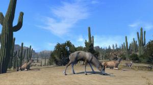 Cabela's Big Game Hunter : Pro Hunts