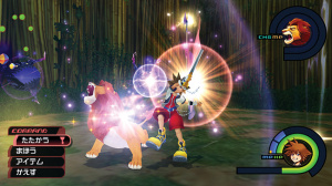 Images de Kingdom Hearts 1.5 HD Remix