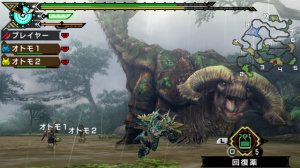 Images de Monster Hunter Portable 3rd HD