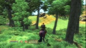 Le prochain Elder Scrolls en 2010