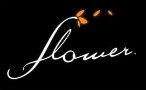 Flower sur PS3