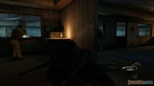 Chapitre 11 : Laboratoire des lucioles