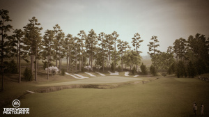 Tiger Woods PGA Tour 14 : A l'ancienne